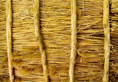 thatched: texture of a thatched roof Stock Photo