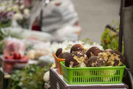 On the street market are selling ceps