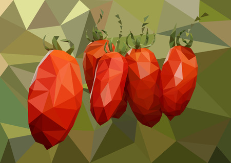 Several ripe red tomatoes hanging on a branch in the greenhouse in summer Illustration