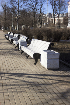 Several white wooden benches and litter bins stand in a row in the spring city park