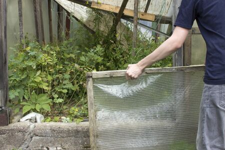 The man parses the old abandoned greenhouse overgrown with weeds Stockfoto