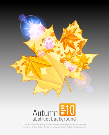 Autumn orange leaves. Seasonal background Vector