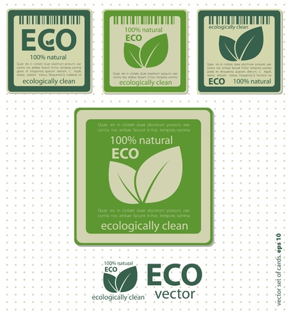 Eco labels with retro vintage design  Vector Vector