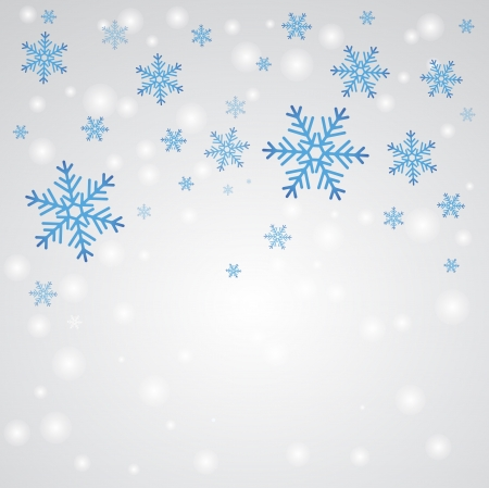 Snow fall. Winter background. Stock Vector - 16219693