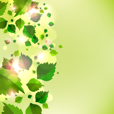 green leaves: Abstract background with fresh green leaves. Vector