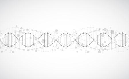 Science template, wallpaper or banner with a DNA molecules. Vector illustration. 版權商用圖片 - 51427611
