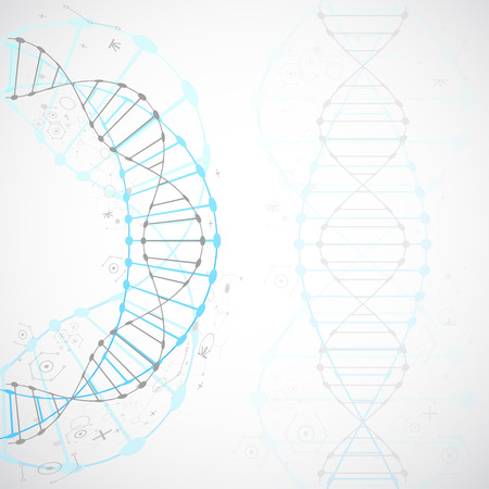 Science template, wallpaper or banner with a DNA molecules. Vector illustration. Banco de Imagens - 51427617