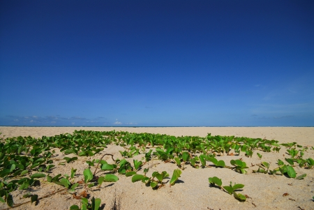 Sand and blue sky  Stock Photo - 12525956