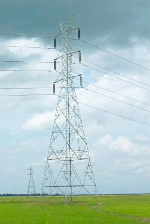 high voltage electric tower  in the rice field photo
