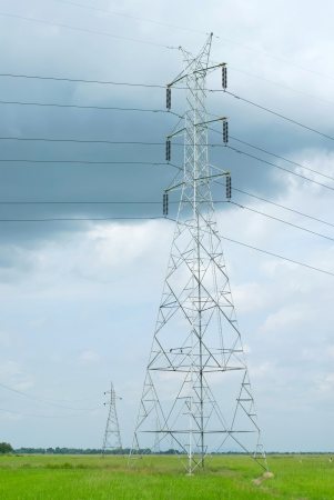 high voltage electric tower  in the rice field