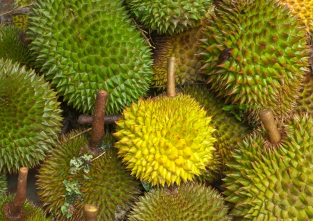 durian fruits, thailand