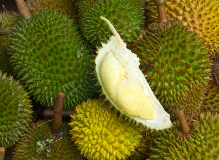 durian fruits, thailand Stock Photo - 17956099