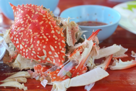 steaming crab shell after eating  photo