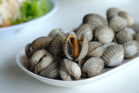 Blanched cockles on white dish