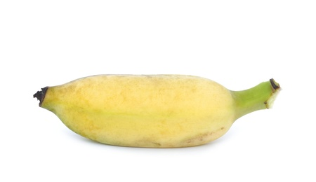 cultivated: cultivated banana on white background Stock Photo