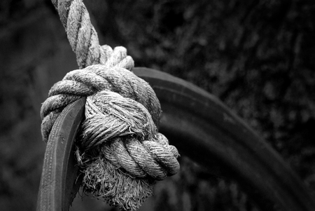 Knotted ropes tied to piece of car tires. For swings in the playground. Black and white. Stock Photo