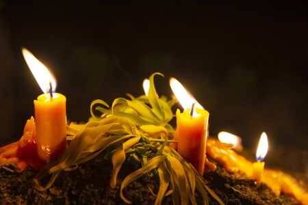 Burning candles with flower on black background.