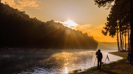 cygnus atratus: Morning in Pang-Ung Lake,North of Thailand