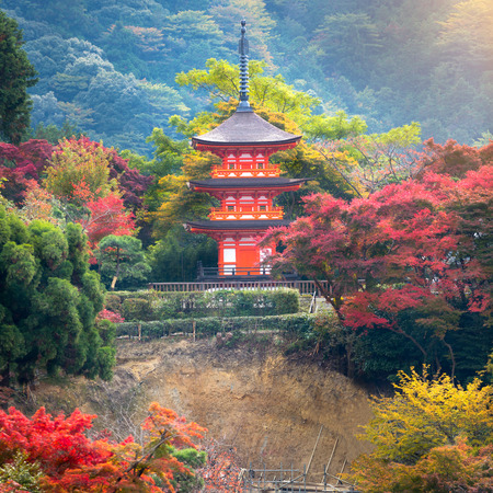twentysomething: Red pagoda at Kiyomizu-dera in autumn season,The leave change color of red castle in japan, Kyoto, Japan Editorial