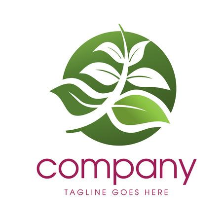 medics: elegant green Leaf Logo Template suitable for your business Illustration