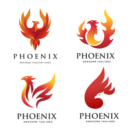 luxury phoenix concept,Design,creative of mythological bird , a unique bird , a flame born from ashes 矢量图像