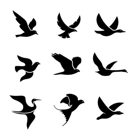 set of flying bird logo vector concept, creative Flying Bird Logo design vector template