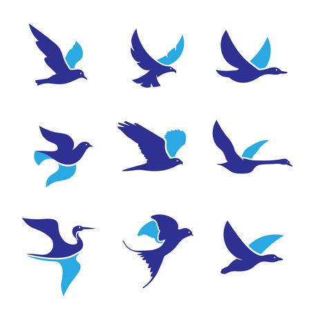 set di concetto di vettore di logo di uccello volante, modello di vettore di progettazione di logo di uccello volante creativo