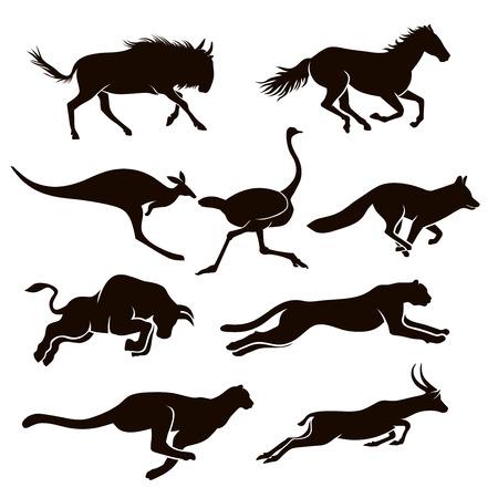 Kolekcja sylwetek wektorowych biegnących zwierząt
