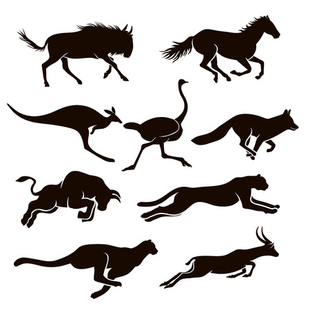 Collection of vector silhouettes running animal