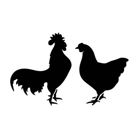 Farm animal silhouette in black on a white background ,chicken Silhouettes isolated on white vector