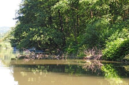 morava: morava river Stock Photo