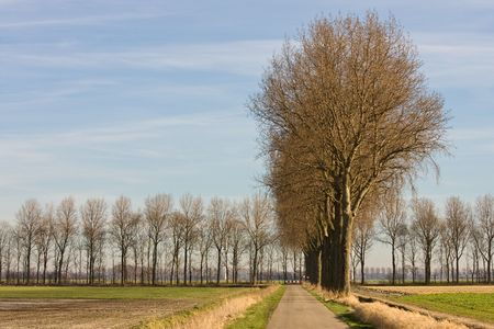 Countryroad in Nederland Stockfoto - 5077028