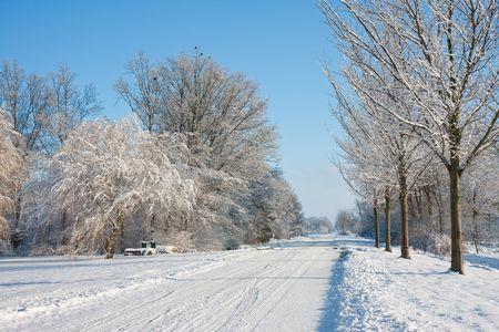 Winter in de landbouwgrond van Nederland Stockfoto - 6175142