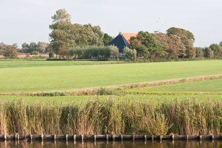 extensive: Typical Dutch farmhouse in the extensive meadows