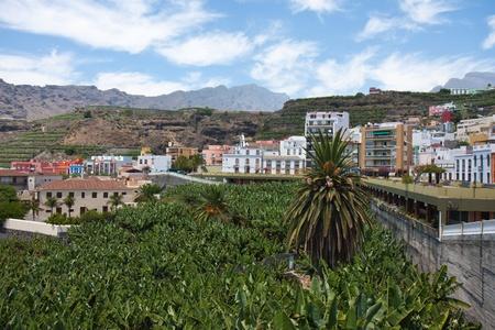 Banana Plantation near Tazacorte, La Palma, Canary Islands, Spain photo