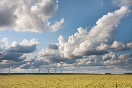 Cloudscape in the evening sunlight above Dutch crop fields photo
