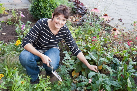 yard work: A woman is gardening in the front garden of her house Stock Photo
