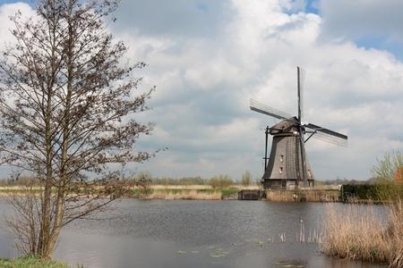 Beautiful traditional windmill in springtime, Kinderdijk, the Netherlands