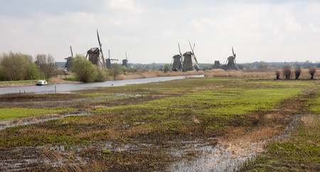 Traditional windmills in the Dutch wetlands