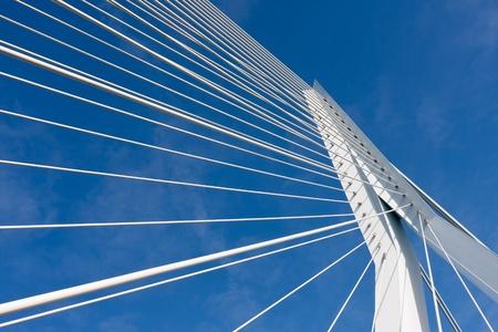 ケーブルの詳細、オランダのロッテルダムのエラスムス橋をとどまった 写真素材
