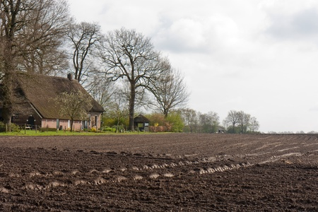 Bare landbouwgrond met boerderij in Nederland Stockfoto - 13350034