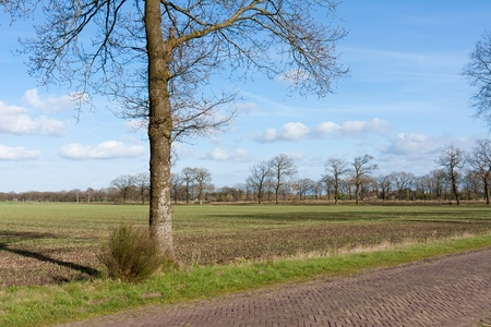 Country road in the Netherlands with bare farmland photo