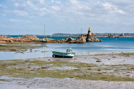 low tide: Coast of Brittany during ebb tide