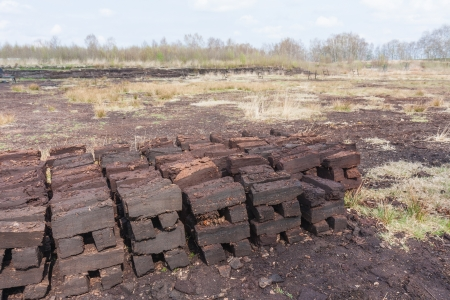 peaty: Peat digging in Dutch rural landscape