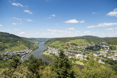 River Moselle near Bullay in Germany Stock Photo - 15689428