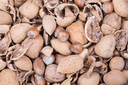 nutshells: Pile of several nuts and nutshells