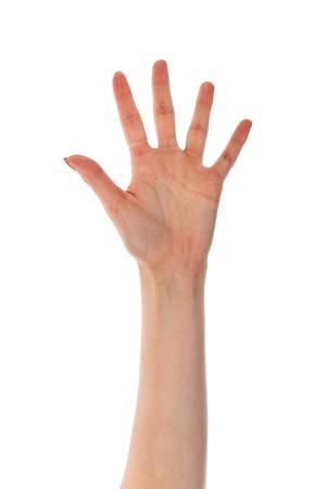 Vrouwelijke hand met vijf vingers op een witte achtergrond Stockfoto - 19361443