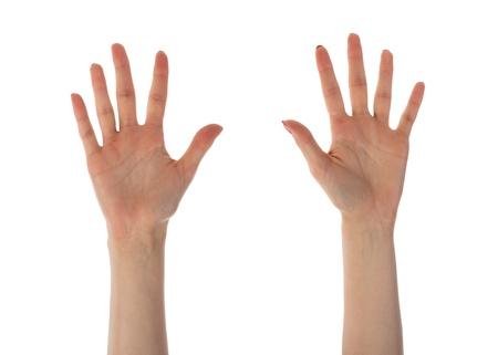 女性の手の十本の指に白い背景で隔離の提示