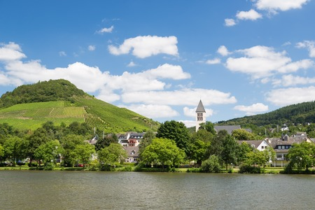 Small town Bullay along river Moselle in Germany 免版税图像