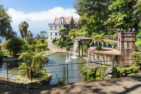 Tropical garden with pond and palace at Funchal,  Madeira island, Portugal photo